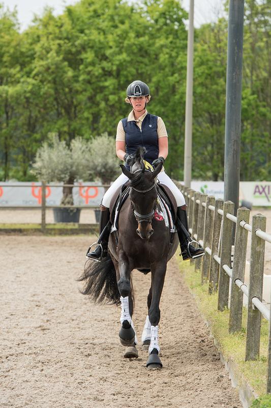 paarden training sh-dressuur